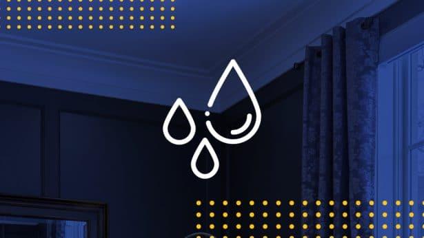 Ceiling Leak Repair
